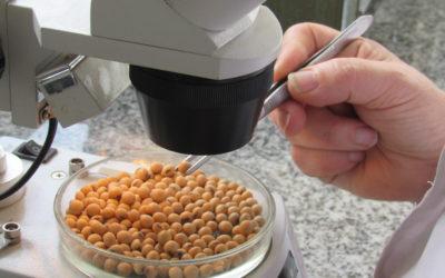 CEPIAS y INASE organizan taller sobre SISA y certificación de semillas